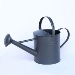 FP Collection Zinc Watering Can 4L