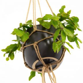 FP Collection Hanging Planter Charcoal