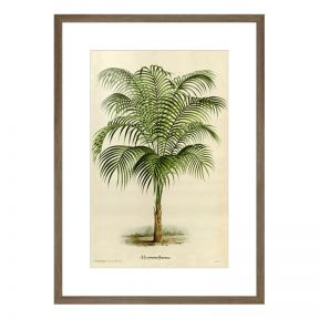 FP Collection Florida Breeze Canvas Wall Art