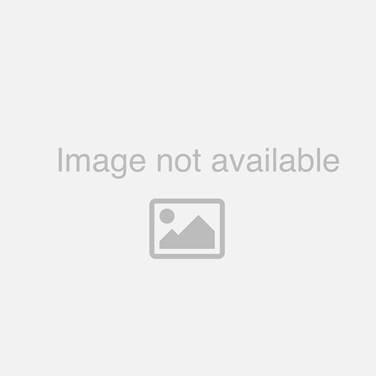 FP Collection Bora Bora Hanging Pot White