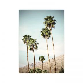 FP Collection Palm Springs Canvas Wall Art