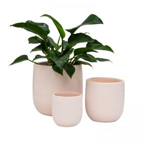 FP Collection Taylor Planter Blush