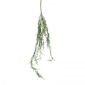 FP Collection Artificial Rhipsalis Floccosa