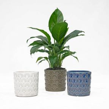 FP Collection Nouveau Planter