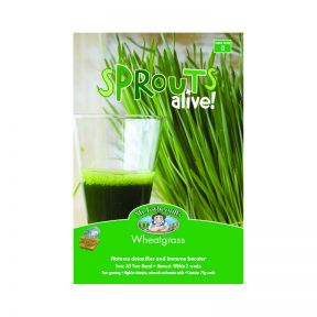 Mr Fothergill's Sprouts Alive - Wheatgrass  ] 5011775030111 - Flower Power