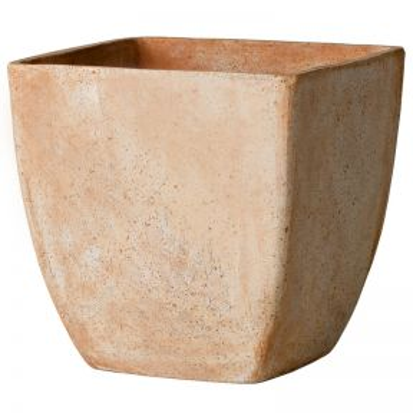 Deroma Quadro Oll Pot