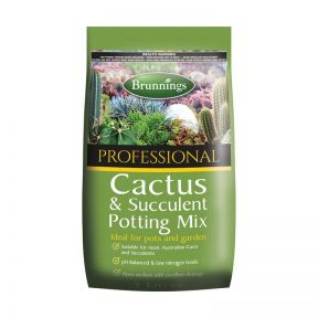 Brunnings Cactus & Succulent Mix