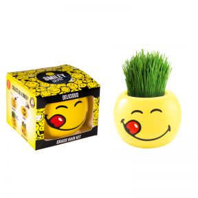 Grass Hair Kit Smiley Faces - Delicious