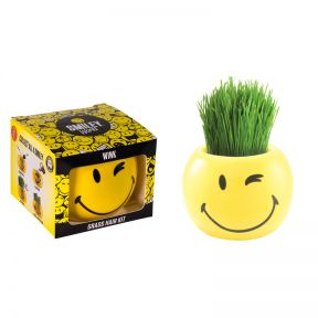 Grass Hair Kit Smiley Faces - Wink