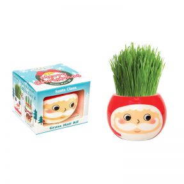 Grass Hair Kit Christmas - Santa