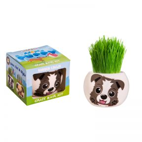 Grass Hair Kit Puppy - Border Collie