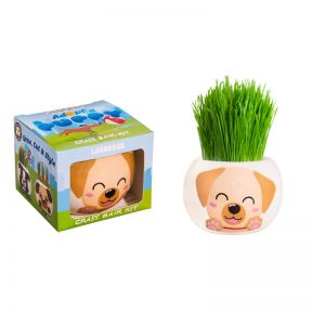 Grass Hair Kit Puppy - Labrador