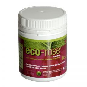 Eco-Rose  ] 9336099000029 - Flower Power