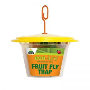 Eco-Lure Male Queensland Fruit Fly Trap  ] 9336099000098 - Flower Power