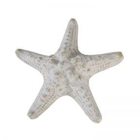 FP Collection Starfish Sculpture