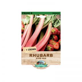 Rhubarb Ever Red  No] 9315774071899 - Flower Power