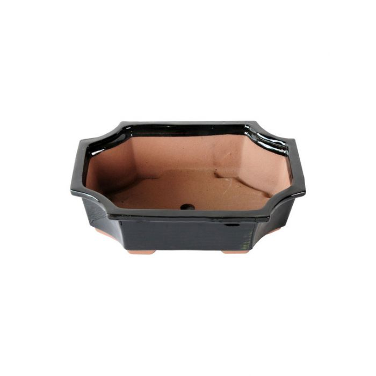 FP Collection Bonsai Rectangular Pot color No 147389P