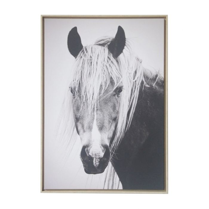 FP Collection Brumby Canvas Wall Art color No 173139