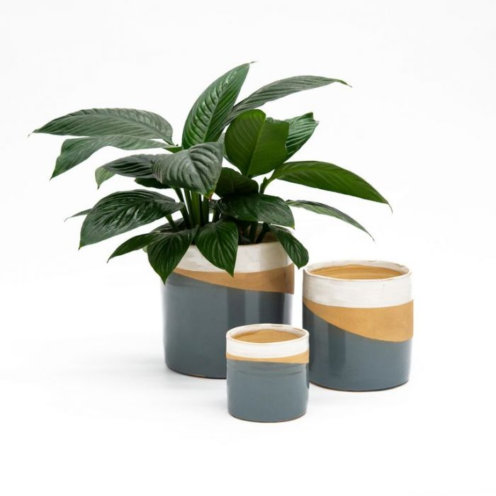FP Collection Amalfi Planter  No] 180179P - Flower Power