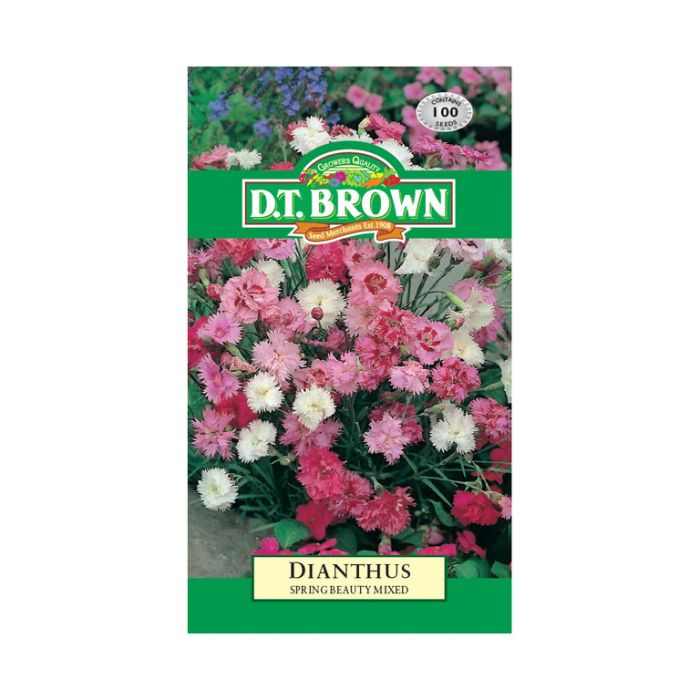 D.T. Brown Dianthus Spring Beauty Mixed  No] 5030075001553 - Flower Power