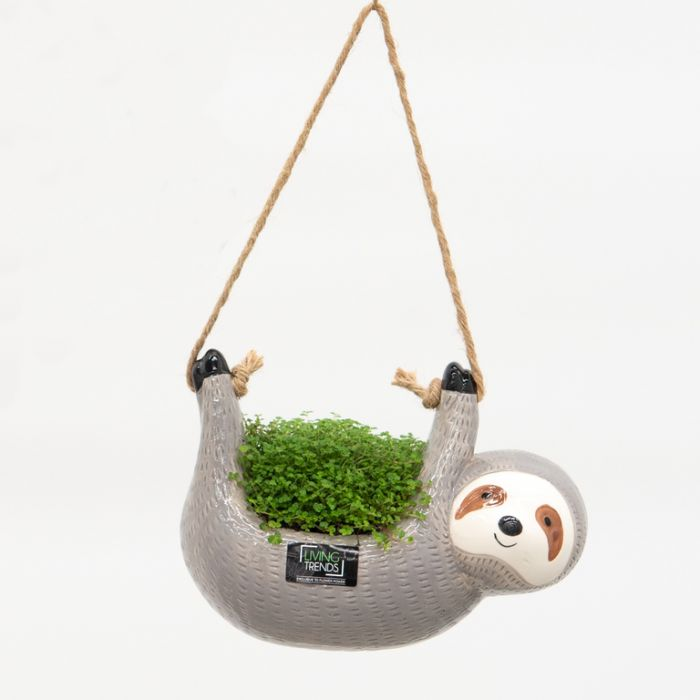 Living Trends Hanging Sloth Planter color No 9022109999