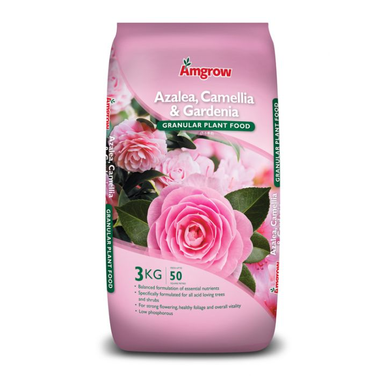 Amgrow Azalea, Camellia & Gardenia Granular Plant Food  No] 9310943550250 - Flower Power