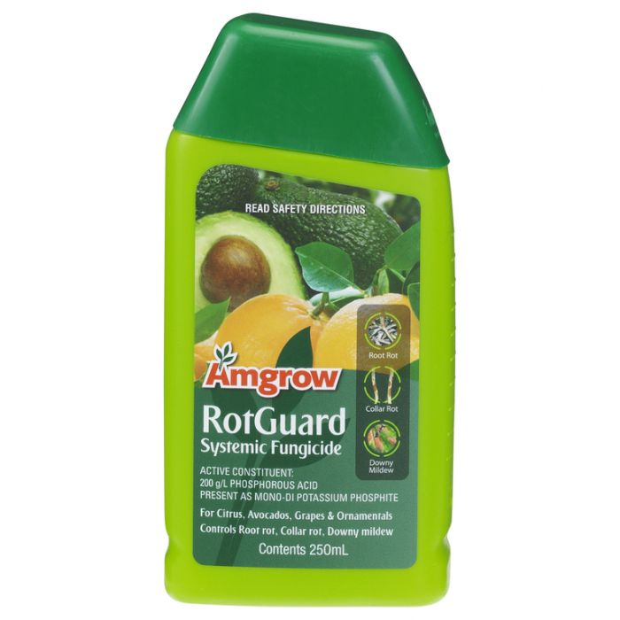 Amgrow Rotguard Concentrate color No 9310943810972