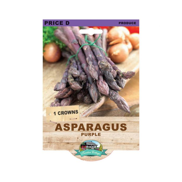 Asparagus  Purple  No] 9315774072216 - Flower Power