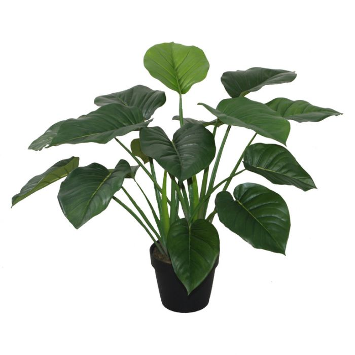 FP Collection Artificial Pothos  ] 168571 - Flower Power