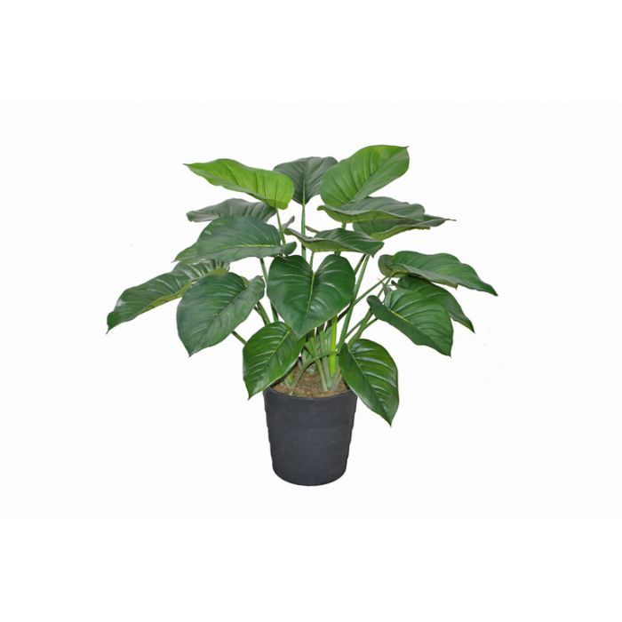 FP Collection Artificial Potted Pothos  ] 175050 - Flower Power