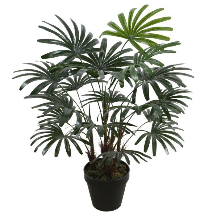 FP Collection Artificial Rhapis Palm  ] 176506 - Flower Power