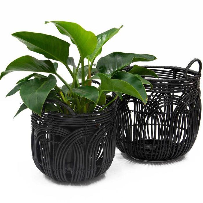 Ballina Retro Basket  ] 179992P - Flower Power