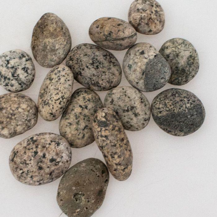 Pebbles Natural Speckled  ] 181895P - Flower Power