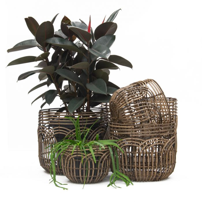FP Collection Twiggy Planter Basket  ] 182093P - Flower Power