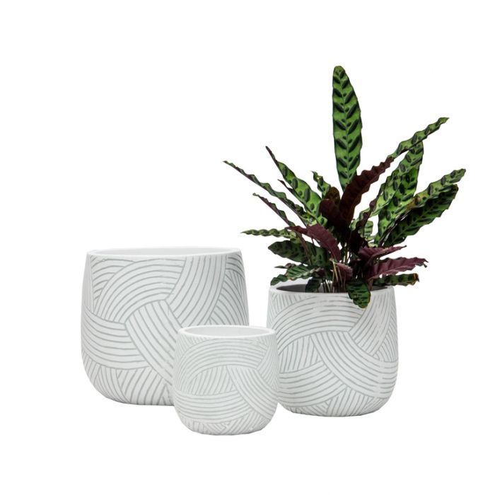 FP Collection Lucas Planter White Small  ] 182332P - Flower Power