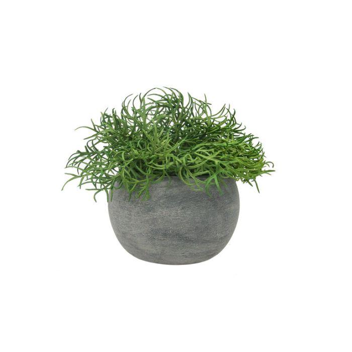 FP Collection Artificial Bonsai Grass in Papier-Mâché Pot  ] 182355 - Flower Power