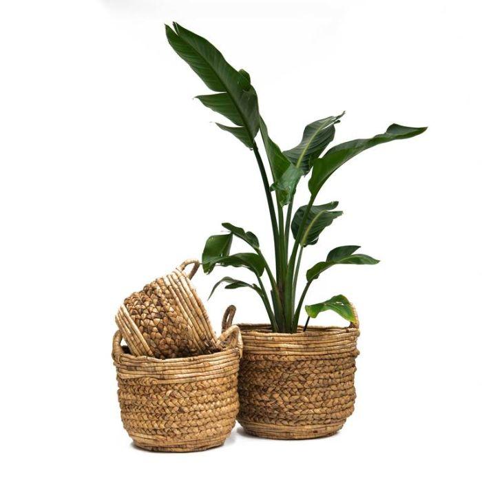 FP Collection Kalea Basket Natural  ] 182393P - Flower Power