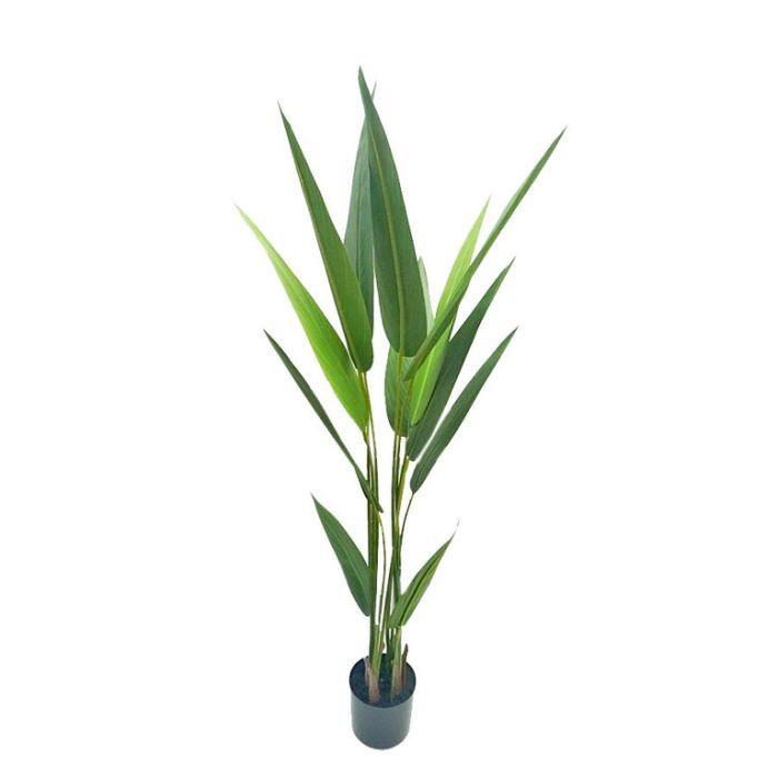 FP Collection Artificial Strelitzia  ] 182493P - Flower Power