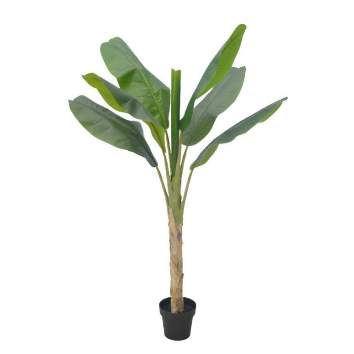 FP Collection Artificial Musa Tree  ] 182497P - Flower Power