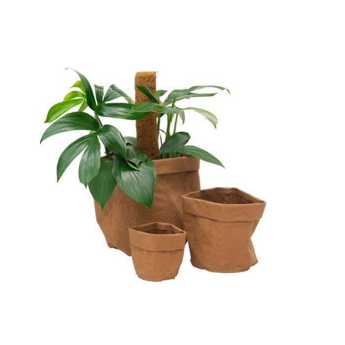 FP Collection Brooklyn Pot Bag Tan  ] 182656P - Flower Power