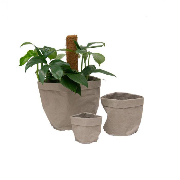 FP Collection Brooklyn Pot Bag Grey  ] 182659P - Flower Power