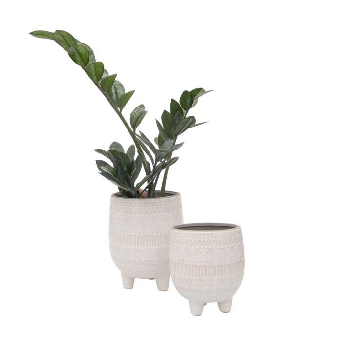 FP Collection Imala Planter White  ] 183733P - Flower Power