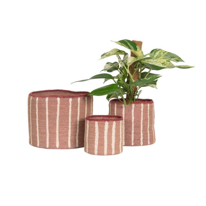 FP Collection Artisan Basket Stripe Blush  ] 184039P - Flower Power