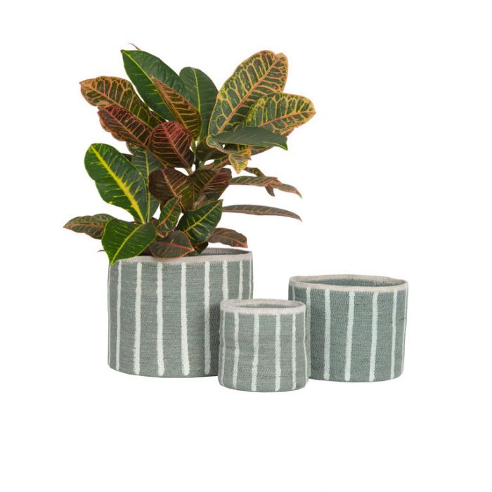 FP Collection Artisan Basket Stripe Blue  ] 184042P - Flower Power