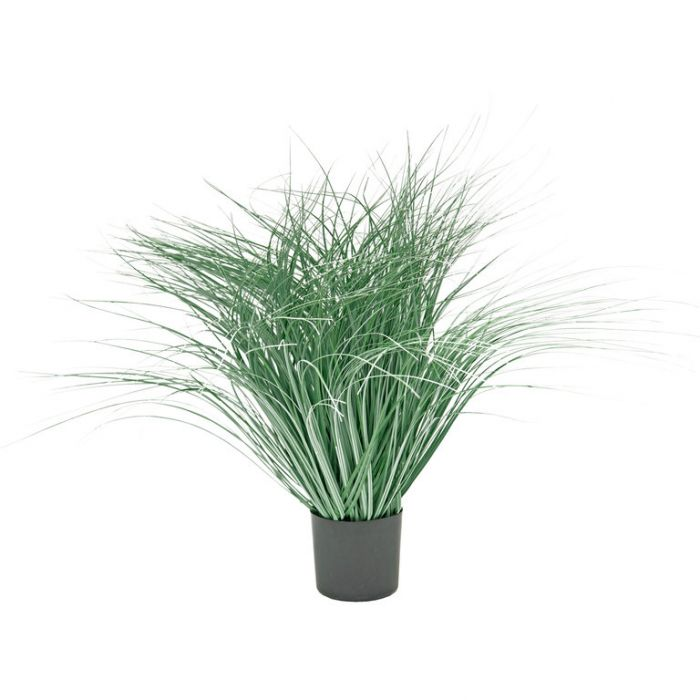 FP Collection Artificial Potted Grass Reeds  ] 184477 - Flower Power