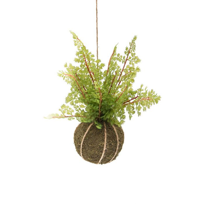 FP Collection Artificial Kokedama Lace Fern  ] 184481 - Flower Power