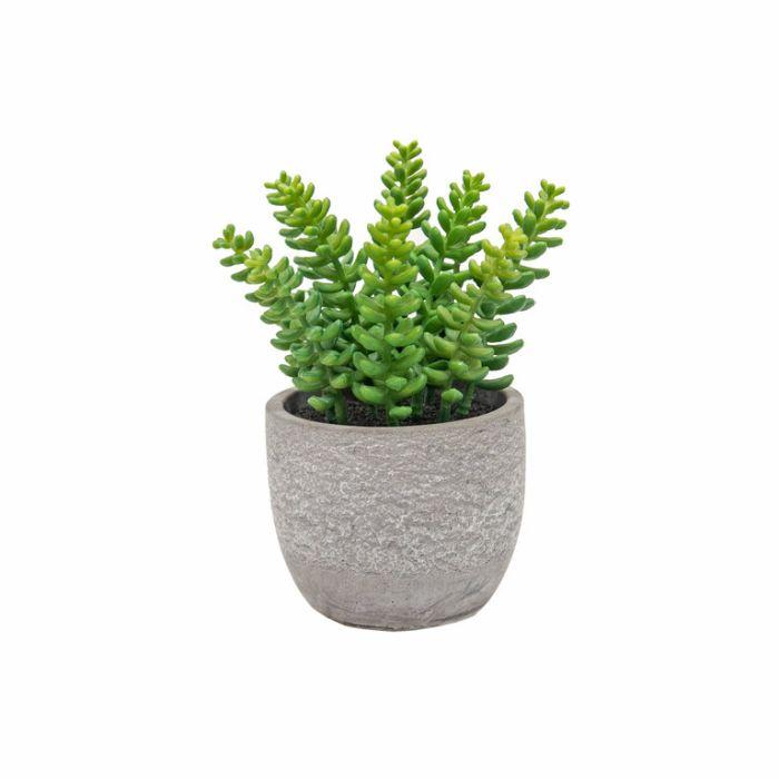 FP Collection Artificial Potted Succulent Sedum  ] 184483 - Flower Power
