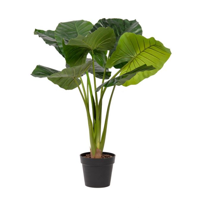 FP Collection Artificial Taro Potted  ] 184796 - Flower Power