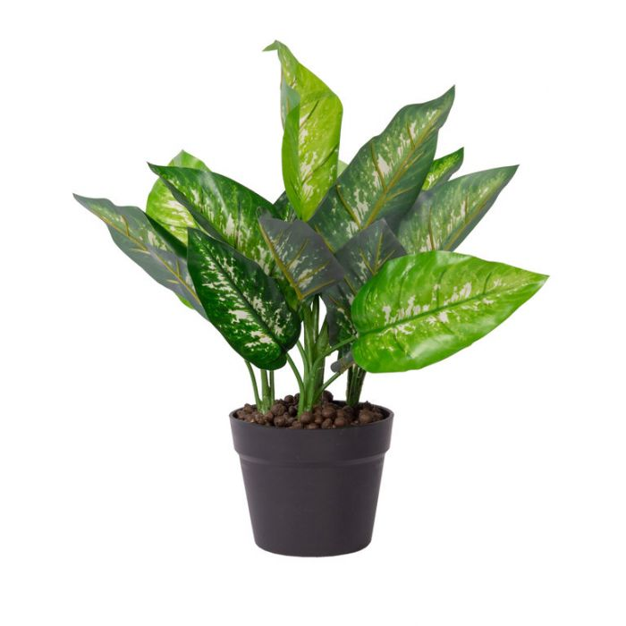 FP Collection Artificial Dieffenbachia Potted  ] 184804 - Flower Power