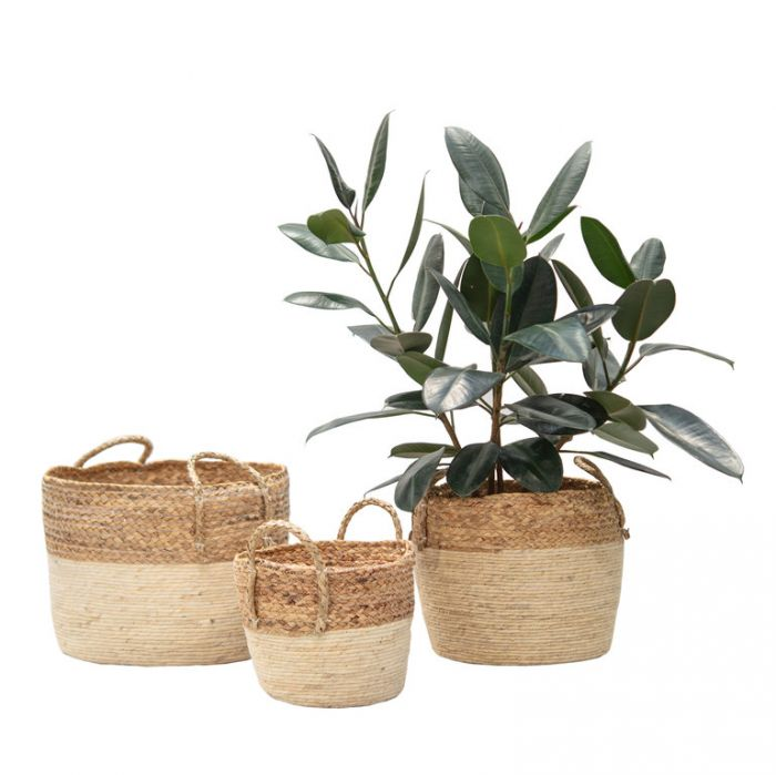 FP Collection Planter Basket Marbella  ] 186098P - Flower Power